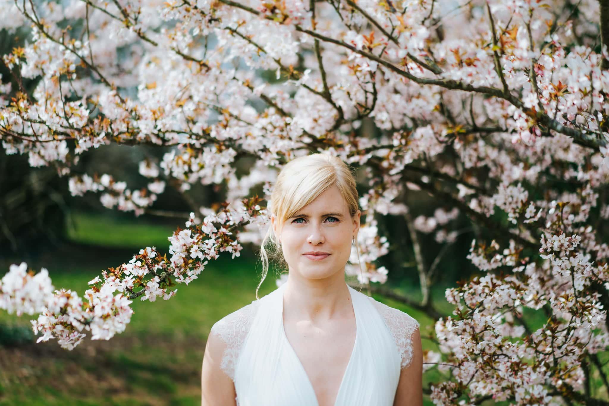 isle of wight wedding bridal portrait under cherry blossom